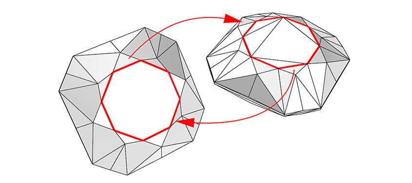 مشهای ان ضلعی در راینو 6